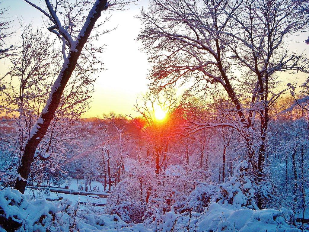 winter_sunrise_by_admiralmichalis-d6xs080.jpg