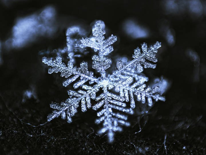 snowflake-3317-983ebf23c2a64cff53b9faccd9eea43c@2x.jpg